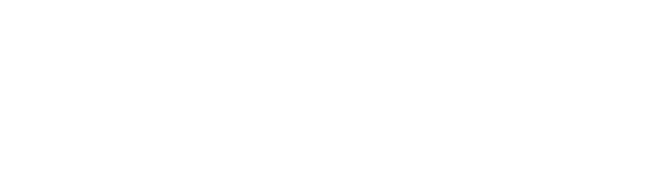 Shake Web Design Studio